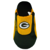 NFL Slippers